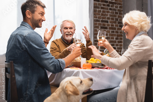 selective focus of golden retriever near excited family toasting with wine glasses during thanksgiving dinner