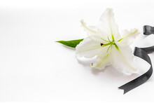 Condolence Card With White Flo...