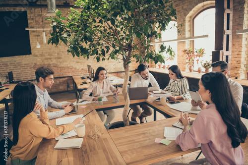 Fotografie, Obraz Nice confident focused people finance agent broker meeting brain brainstorming s