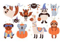 Halloween Holiday Cute Animals...
