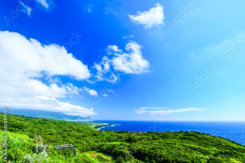 八丈小島と海の景色 Canvas-taulu