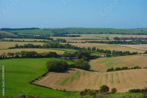 Fototapeta Butser Hill ,Hampshire obraz na płótnie
