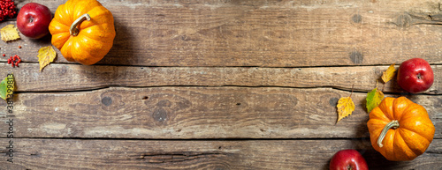 Fototapeta Autumn composition for Thanksgiving day. Pumpkin,fruits apples, floral and seasonal decoration on rustic wooden table. Autumn background. Long format with copy space obraz