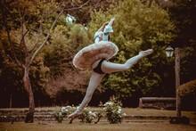 Ballet Dancer Dancing At Nature