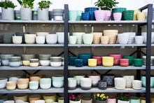 Colorful Flower Pots On Shelf In Store