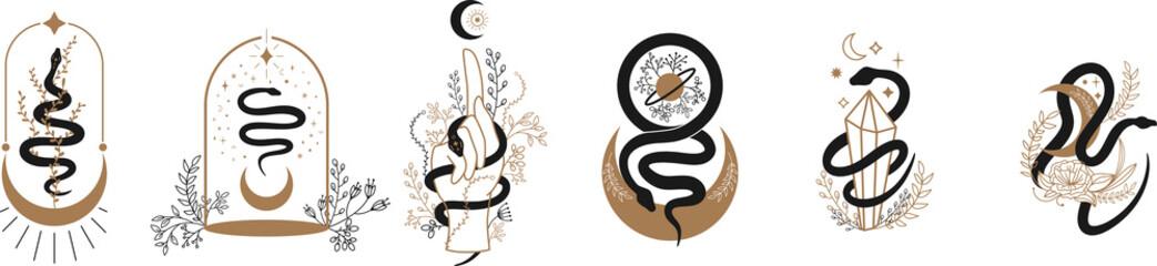 Cvjetna čarobna zmija. Zmija i divlje cvijeće. Noć vještica i boho Cvjetni dizajn. Botanički elementi. Crna silueta zmija za logotip, tetovaža. cvjetni okviri, sunce, mjesec, zvijezda, kristali