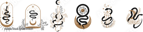 Photo Floral magic Snake
