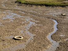 Neumático De Automovil Viejo Y Mas Desperdicios Y Basura En Una Marisma Cerca Del Mar, Contaminando El Entorno Natural.