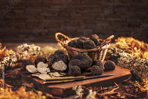 Expensive black truffle mushrooms #381467063
