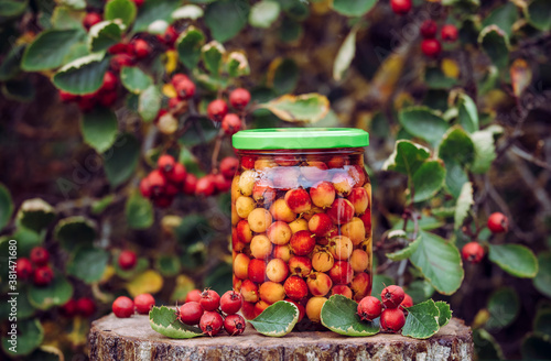 Crataegus monogyna, known as common hawthorn or single-seeded hawthorn berries soaking in alcohol for medicinal purposes Fototapeta