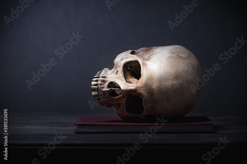 Fotomural Still life of human skull that died for a long times ,concept of horror or thril