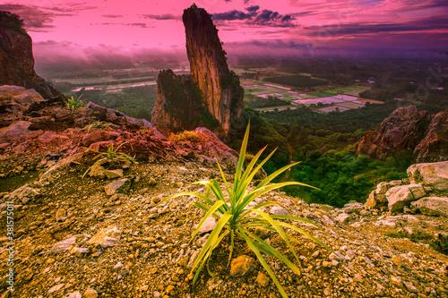Fényképezés Natural panoramic lakeside nature background, beautiful twilight sunset, blurred meadow wind