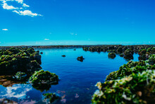 Mossy Rock Formations On The C...