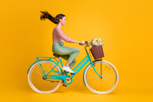 Full Length Body Size Side Profile Photo Of Girl Riding Blue Bicycle With Basket Of Wild Flowers Isolated On Vibrant Yellow Color Background