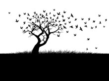 Shape Of Tree, Wind And Black Birds. Vector Outline Illustration. Plant In Garden.