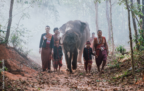 Fotografia thai shepherds in the jungle with  elephants