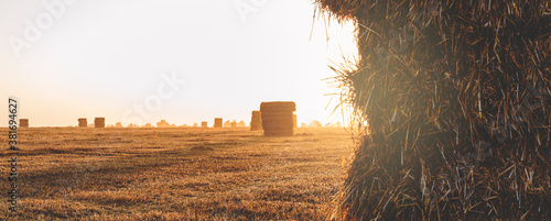 Bright rural scene with haystacks in farm field during sunny autumn morning Canvas Print