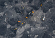 Coal mining an open pit extractive industry, top view aerial