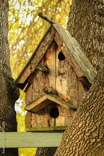 Fotografering Wooden birdhouse in a tree
