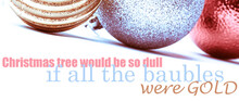 Christmas Would Be So Dull If ...