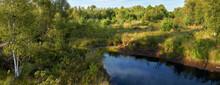 Panoramic Photo Of A Swamp Lan...