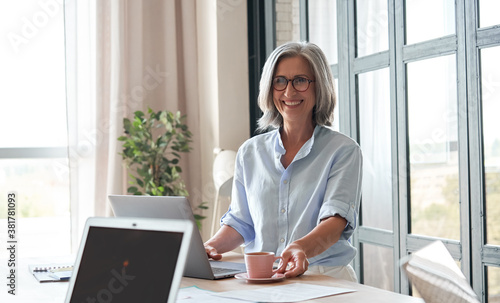 Obraz Happy old female mentor, coach or teacher standing at table during workshop. Smiling mature business woman executive participating conference or leading professional office training, university class. - fototapety do salonu
