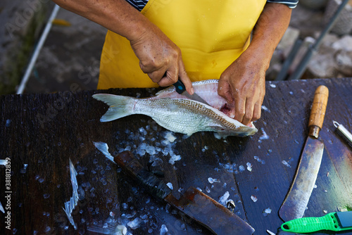Fotografía A worker cleaning and filleting a fresh caught saltwater striped bass fish