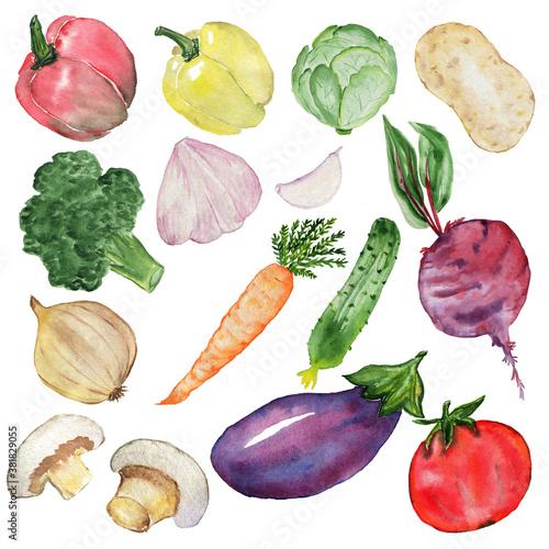 Fényképezés Vegetable set