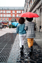 Back View Friends In Rainy Day