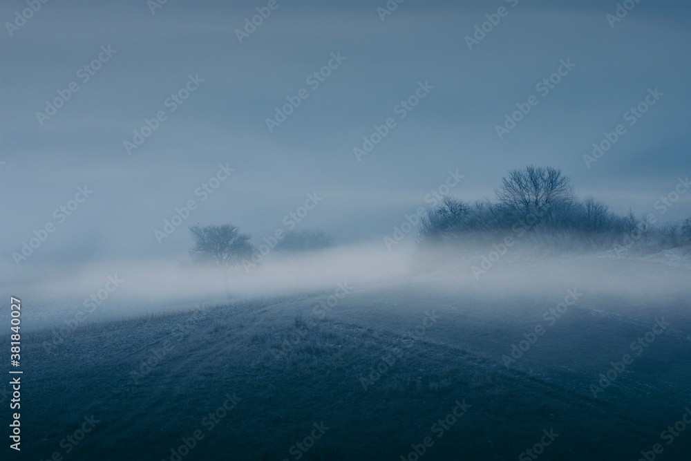 Fototapeta dark fog on hill landscape, twilight scenery with trees in mist