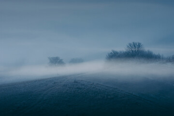 dark fog on hill landscape, twilight scenery with trees in mist