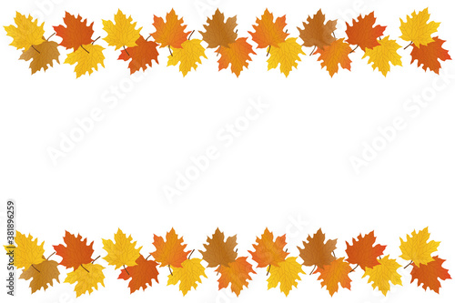 Cuadros en Lienzo Autumn background