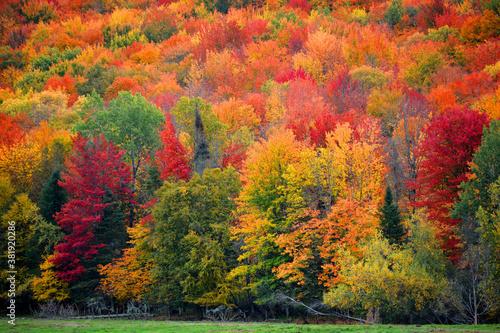 Fotografía Fall landscape eastern townships Bromont Quebec province Canada