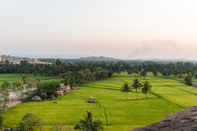 High Angle View Of Rice Fields And Palm Trees At Dusk With Virupaksha Temple In Hampi Island, India, Karnataka.