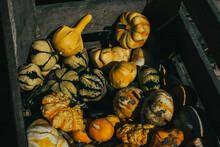 Gourds In A Crate