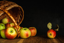 Apples Scattered From A Wicker Basket Lying On Its Side On A Wooden Table Surface Against A Black Concrete Wall. Dark Artistic Shot With Copy Space. Autumn Fruit Concept