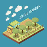 Olive Garden Isometric Composition