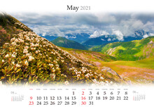 Calendar May 2021, B3 Size. Set Of Calendars With Amazing Landscapes. Blooming White Rhododendron Flowers On Caucasus Hills. Splendid Spring Scene Of Mountain Valley, Georgia, Europe.