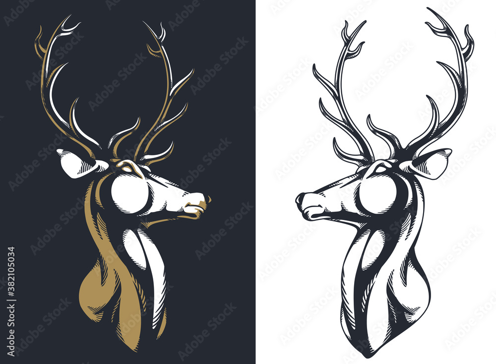 Fototapeta Silhouette stag buck elk deer head antlers majestic portrait isolated vector logo emblem mascot insignia