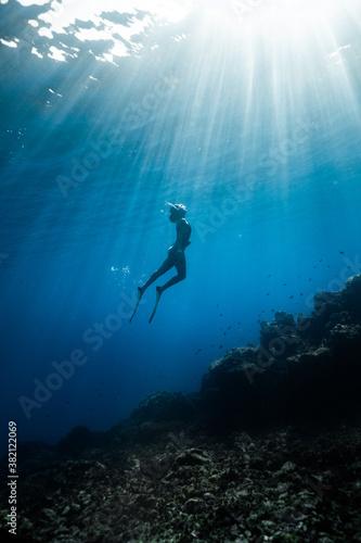 Obrazy Sporty Wodne   underwater-world