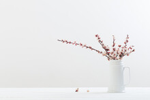Cherry Flowers In Vase On White Background