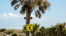 Slow Turtle Crossing Sign Near The Beach On Amelia Island, Florida.