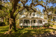 A Southern Mansion And A Large Live Oak Tree In Fernandina, Georgia.