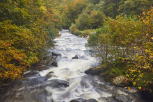 A View Of A Moorland River Surrounded By Autumnal Ancient Forest, The East Lyn River, At Watersmeet, Exmoor National Park, Devon, England, United Kingdom