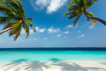 Tropical Beach And Palm Trees,...