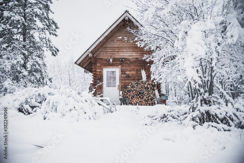 Fotografie, Obraz A cozy log cabin in the snowy winter landscape