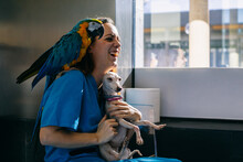 Happy Vet With Parrot And Dog