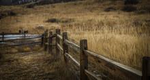 Colorado Springs Backyard Fence