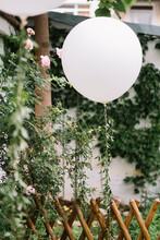 Outdoor Party Balloon