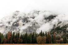 A Foggy Autumn Morning In Yose...